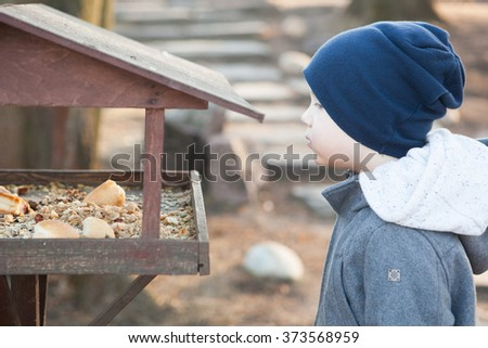 The boy feeds the birds in the feeder - stock photo
