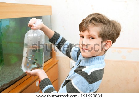 The boy is going to lets out fishes in an aquarium - stock photo