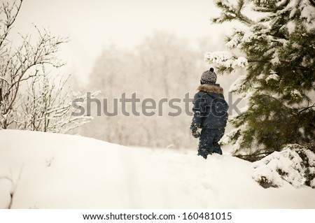 The boy is looking at the snow-covered Forest in Winter - stock photo