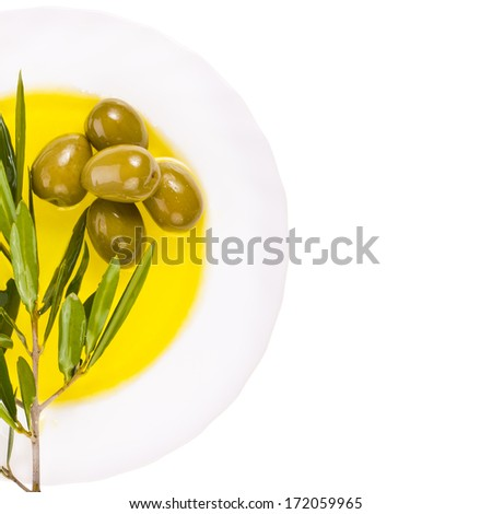 The branch of olive tree and olives on the background of the circle of olive oil isolated on white background - stock photo