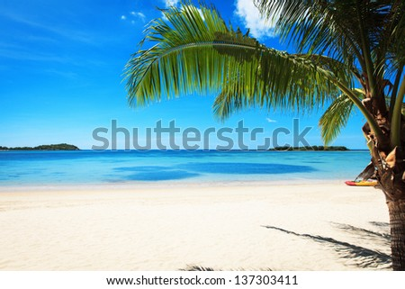 The branches of coconut palms against the clear blue sky and turquoise sea. Beautiful tropical landscape.