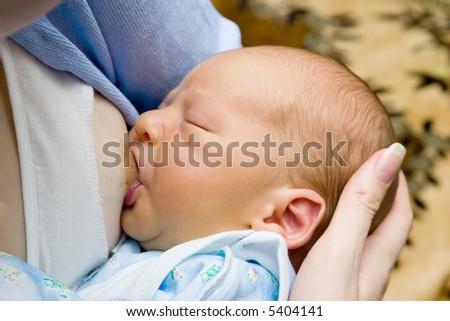 the breast feeding of newborn - stock photo