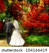 The bride and groom are in the autumn forest - stock photo