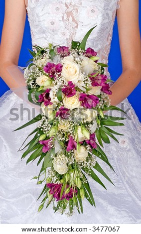 The bride in a wedding dress and with a bouquet on a dark blue background