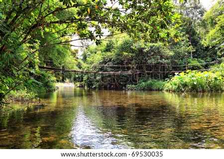 The bridge on the river in jungle, Thailand - stock photo