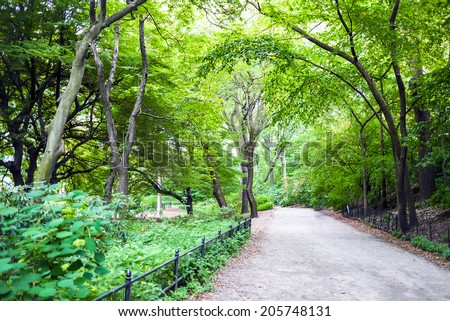 The bridle path along the west side of Central Park in New York City.  The dirt path is often traversed by horses, joggers and walkers shunning the crowded Central Park Drive. - stock photo