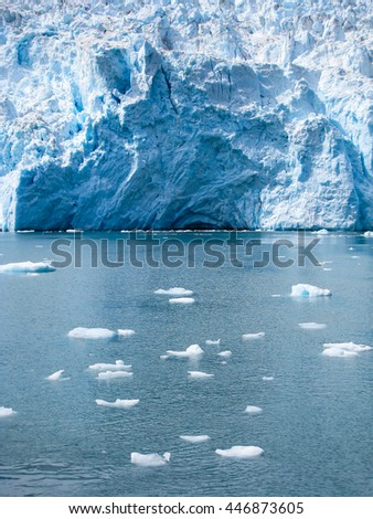 The broken floating ice from Holgate Glacier scatter all over the Aialik bay  in Alaska.