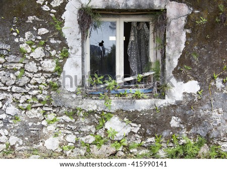The broken window of an abandoned house in Tadine town on Mare island (New Caledonia). - stock photo