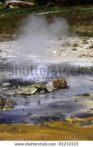 The bubbling Minute Geyser at Yellowstone National Park. - stock photo