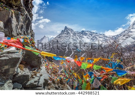 The Buddhist tibetan prayer flags on the top of mountain in Daocheng, Sichuan Province, Tibet of China. - stock photo
