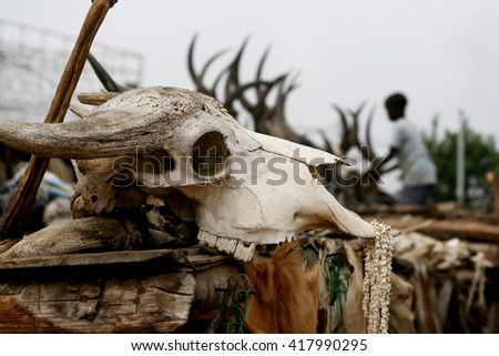 The buffalo skull for sale in order to use in voodoo rituals, Akodessewa Fetish voodoo market. Lome, Togo, Africa.  - stock photo