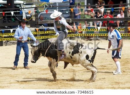 The Bull Rider - stock photo