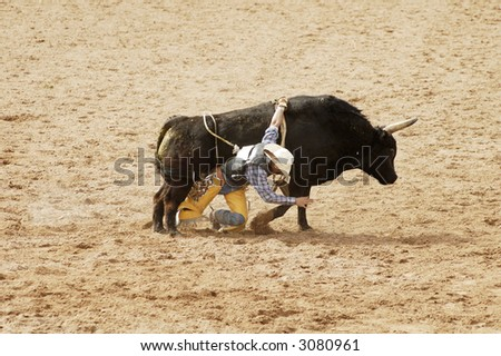 the bull riding event at a rodeo in Arizona
