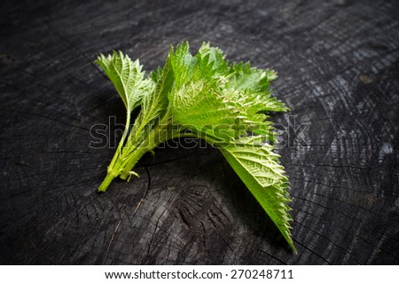 The bunch of a nettle lies on a dark kitchen table - stock photo