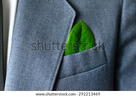 The businessman's photo in a suit with a green leaf in a pocket - stock photo