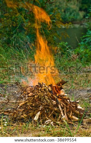 The campfire, green around vertical picture - stock photo