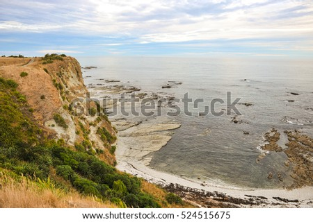 The cape in Ohau Point Seal Colony, Kaikoura, New Zealand