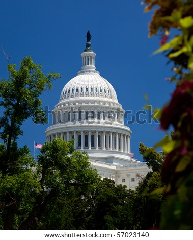 The Capitol building in Washington DC framed by tree with flowers in the foreground - stock photo