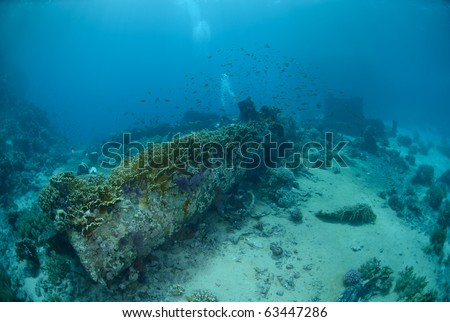 The Cargo Of The Yolanda Shipwreck Scattered Over The Ocean Floor. Red Sea,  Egypt