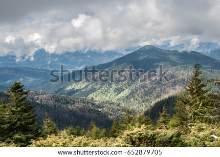 "The Carpathian Mountains, spring, walking route  ""Kvasy to Hoverla""."