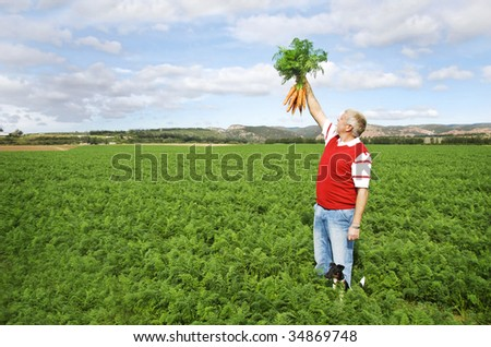 The carrot farmer holding a bunch of freshly picked carrots - stock photo