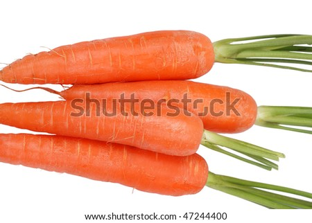 The carrots isolated on a white background