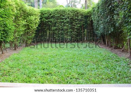 The casual backyard. - stock photo
