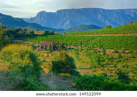 The Cathar Castle of Peyrepertuse in the Aude region of France - stock photo