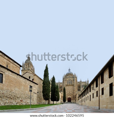 The cathedral of Salamanca. The old city of Salamanca is an Unesco World Heritage site.