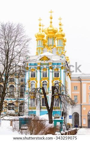 The Catherine Palace in winter and a fir tree, a Rococo palace located in the town of Tsarskoye Selo (Pushkin), 25 km south-east of St. Petersburg, Russia.