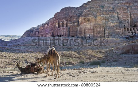 The cave town Petra in the Jordan rocks in the desert - stock photo
