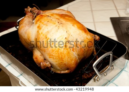 The centerpiece of contemporary Thanksgiving in the United States and Canada is a large meal, generally centered around a large roasted turkey.