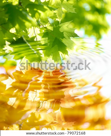 the change of seasons, spring and autumn - stock photo