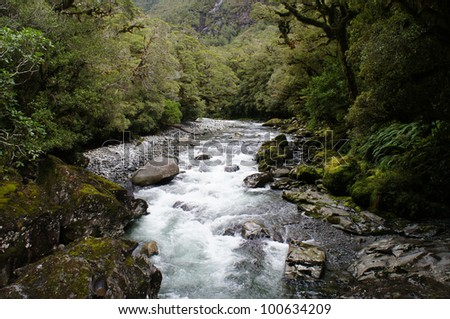 The Chasm - lush rainforest and river landscape - New Zealand - stock photo