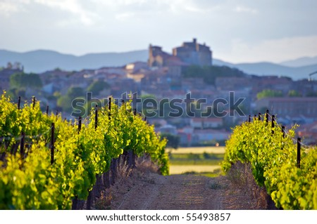 The Chateau of Puissalicon, in Languedoc - stock photo