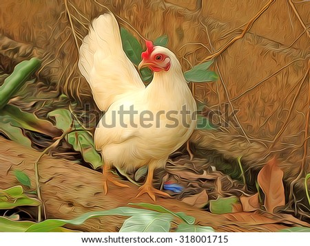 The chicken,Oil Painting,illustration. - stock photo