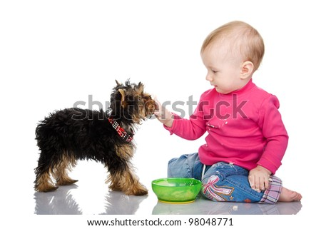 The child feeds a puppy. isolated on white background