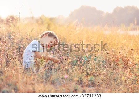 The child in the field during a sunset - stock photo