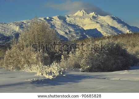 The Chilkat Valley under a covering of snow, with mountains behind. Southeast Alaska. - stock photo