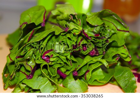 The chopped leaves of beet tops closeup - stock photo