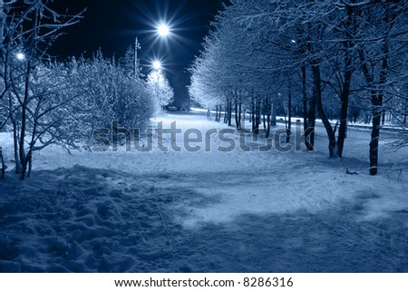 The city path which is taking place on avenue, covered with a snow. - stock photo