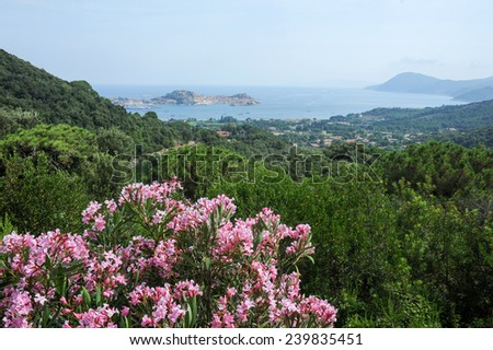 The coast of Portoferraio on Elba isalnd, Italy - stock photo