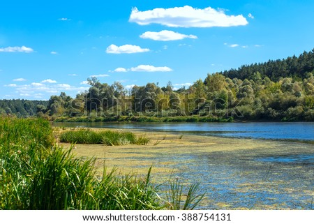 The coast of river Neman, Belarus at summer day - stock photo