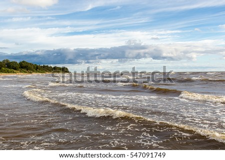 The coast of the Baltic Sea in windy summer day before a rain