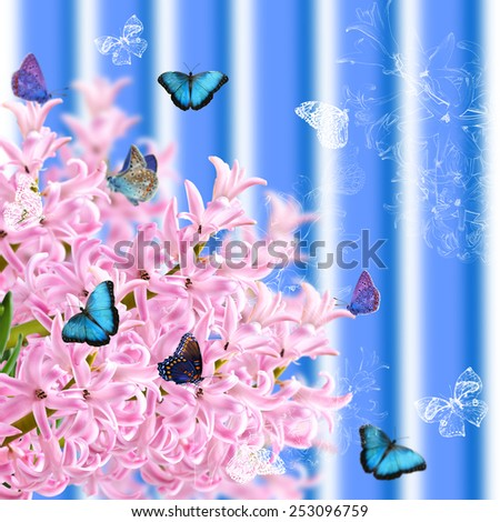 The collage of colors pink hyacinth and butterflies on a striped background - stock photo