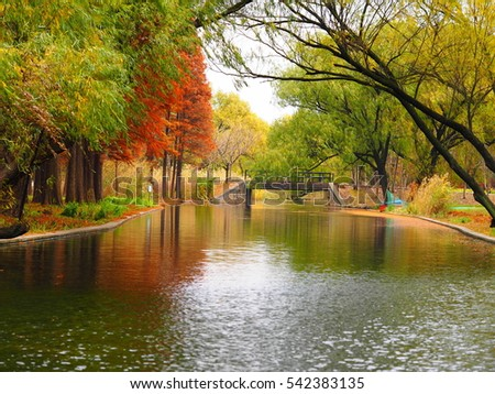 The colorful and pretty autumn view with the trees and the river in the park