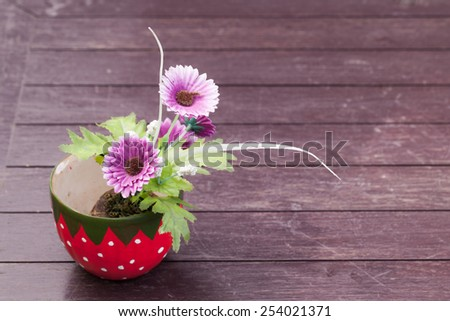 The colorful flowers pots decoration on table