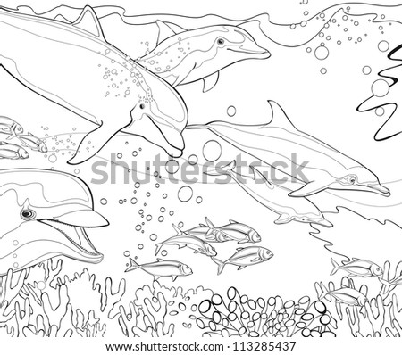 the coloring book dolphins coral reef illustration for the children - Coral Reef Coloring Pages Kids
