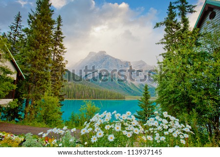 The Colors of Autumn in Alberta, Canadian Rockies - stock photo