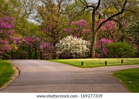 The colors of spring create a scenic drive through the grounds of The Morton Arboretum in Lisle, Illinois. - stock photo